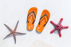轻碰在白色沙滩的flopsand海星 免版税库存图片