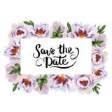 轻轻地桃红色牡丹 花卉植物的花 框架边界装饰品正方形 向量例证