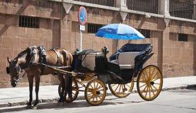 载马的车辆。 免版税库存照片