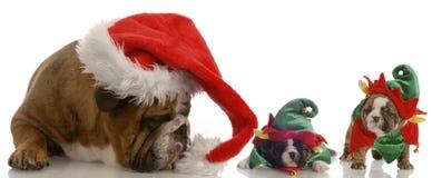 辅助工他小的圣诞老人 免版税库存照片