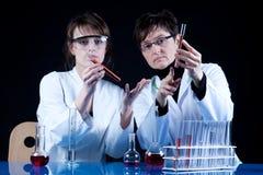 辅助有经验的科学家 库存照片