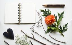 辅助部件、花和一个笔记本创造性的大模型在白色背景 库存照片
