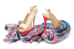 辅助部件s穿上鞋子妇女 图库摄影