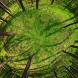 辐形360全景 免版税图库摄影