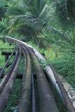 输油管在雨林,特立尼达里 库存图片