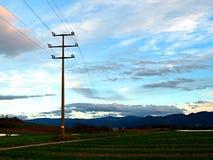 输电线支持在晚上 免版税库存照片