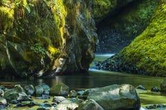辔面纱基地在哥伦比亚河峡谷落 图库摄影