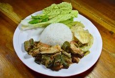 辣三文鱼绿色咖喱和混乱油煎了圆白菜用在米的鸡蛋 免版税库存图片