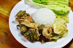 辣三文鱼绿色咖喱和混乱油煎了圆白菜用在米的鸡蛋 免版税图库摄影