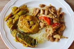 辣与蓬蒿叶子和鲶鱼咖喱的混乱炸鸡在米 免版税库存照片