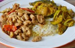 辣与蓬蒿叶子和鲶鱼咖喱的混乱炸鸡在米 库存图片