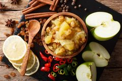 辣印地安调味汁-与柠檬特写镜头的苹果酸辣调味品在碗 免版税库存照片