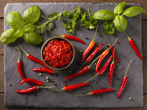 辣味番茄酱 库存图片