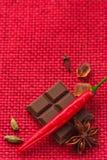 辣巧克力。 免版税库存图片