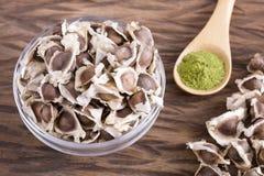 辣木科有机种子-含油椒木属 免版税库存图片