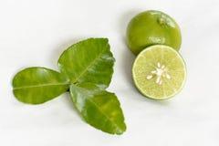 辣柠檬香茅汤或汤姆薯类香料  免版税库存图片