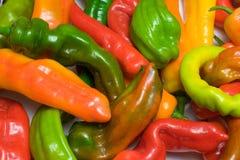 辣椒五颜六色的胡椒 免版税库存图片
