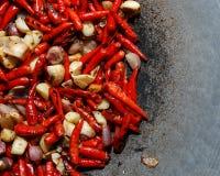 辣椒和大蒜和青葱 库存图片