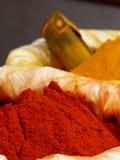 辣椒和姜黄在斋浦尔市场上 库存图片