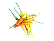 辣椒和白色背景 免版税库存图片