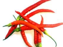 辣椒和白色背景 库存照片