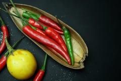 辣椒用与盐的茄子在黑背景 库存图片