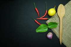 辣椒用姜用茄子用与非洲黑人石灰的泰国葱生叶与在黑背景的木匙子与麻袋布 图库摄影