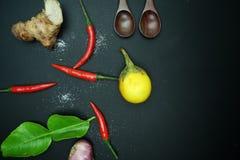 辣椒用姜用茄子用与非洲黑人石灰的泰国葱生叶与在黑背景的木匙子 免版税库存照片