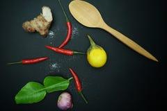 辣椒用姜用茄子用与非洲黑人石灰的泰国葱生叶与在黑背景的木匙子 库存图片