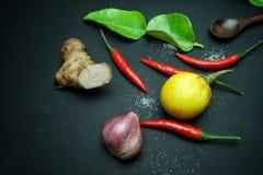 辣椒用姜用茄子用与非洲黑人石灰的泰国葱离开与木匙子在黑背景 库存图片