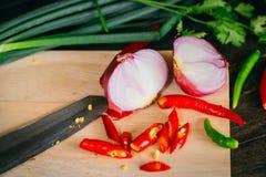 辣椒用红色青葱辣草本 图库摄影