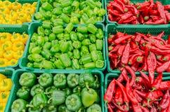 辣椒的果实和辣椒 免版税图库摄影
