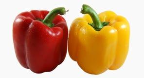 辣椒的果实夫妇 库存图片