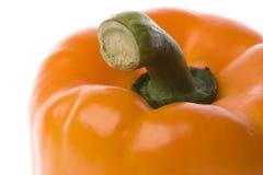辣椒的果实桔子 库存图片