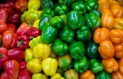 辣椒的果实颜色 免版税库存图片
