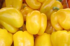 辣椒的果实黄色 免版税库存图片