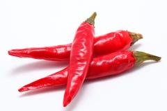 辣椒的果实 免版税库存照片
