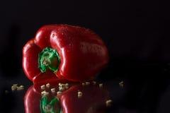 辣椒的果实 免版税图库摄影