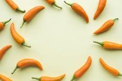 辣椒集合顶视图与拷贝空间的在柔和的淡色彩 免版税图库摄影