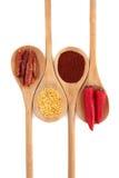 辣椒香料种类 库存照片