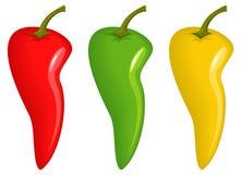 辣椒 向量例证