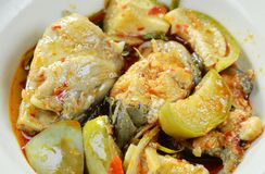 辣油煎的鲶鱼用咖喱和茄子在碗 免版税库存图片
