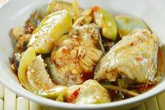 辣油煎的鲶鱼用咖喱和茄子在碗 免版税图库摄影