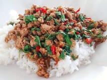 辣泰国蓬蒿剁碎的猪肉 库存照片
