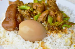 辣混乱油煎了咖喱鸡内脏,并且甜点煮沸了在米的红皮蛋 库存图片