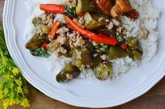 辣混乱油煎的茄子和剁碎的猪肉在米 库存照片