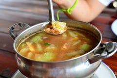 辣混杂的蔬菜汤 免版税库存图片