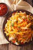 辣炸薯条用切达干酪、辣椒和鸡 库存照片