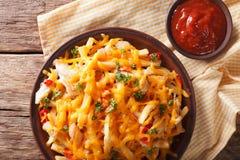 辣炸薯条用切达干酪、辣椒和鸡 库存图片