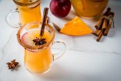 辣热的南瓜桑格里酒 免版税图库摄影